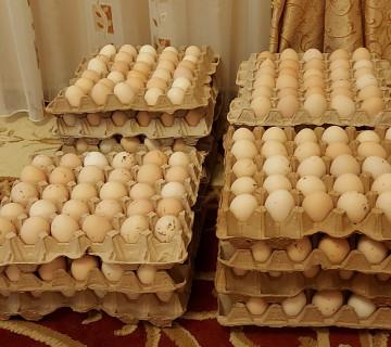 Mayalı yumurta