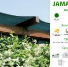 Jamaica (örtük)