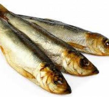 Zalom balığı