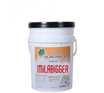 MiLABIGGER