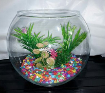 Yumru akvarium