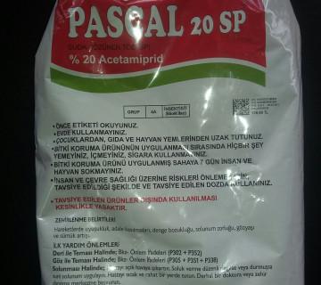 Pascal 20SP