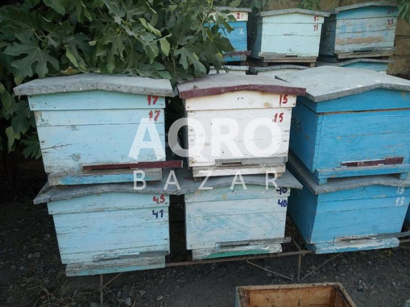 İşlənmiş arı yeşikləri