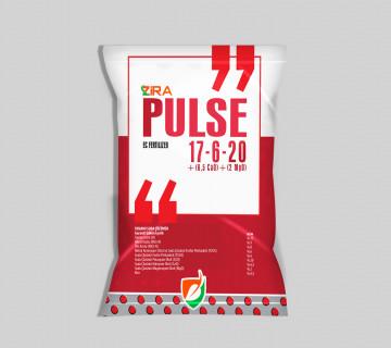 Zira Pulse 17.6.20 +(6,5CaO) + (2MgO)