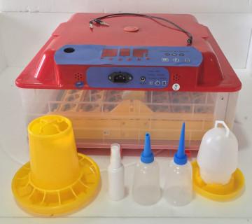 inkubator 63 Yumurtalıq