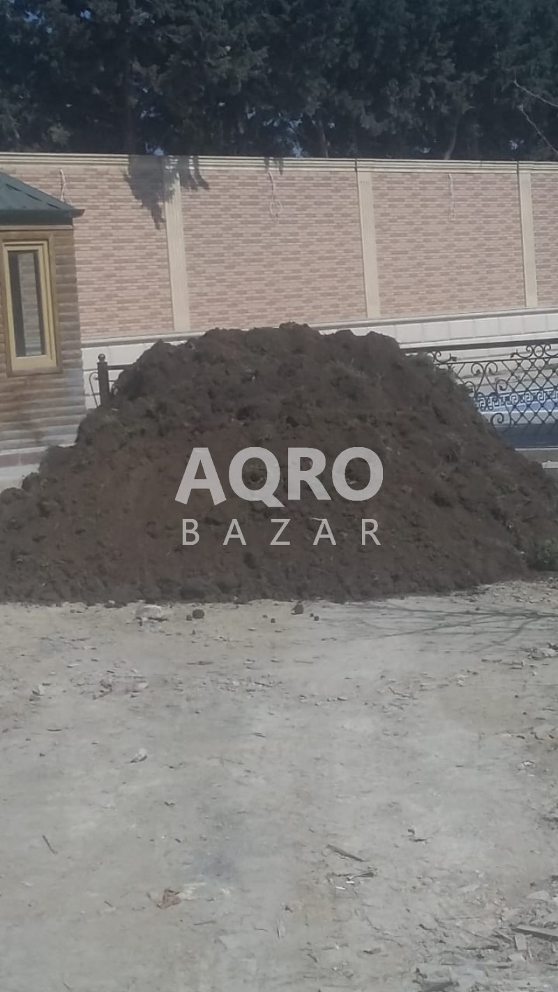 Qara torpag